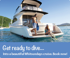 Get ready to dive into a beautiful Whitsundays cruise. Book now!