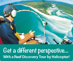 Reef Discover Tour Scenic Flight