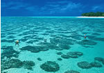 Heron Island Accommodation