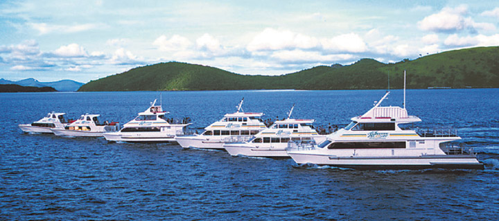 Great Barrier Reef Day Cruises