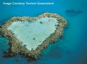 Be Surrounded By One Of The World S Seven Wonders On Your Wedding Day At Great Barrier Reef With Helireef Whitsunday