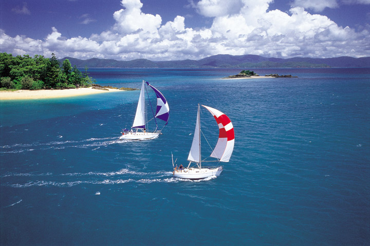 Racing Yachts Whitsundays